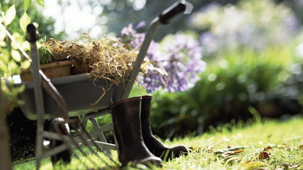 Jetzt Aktionspreise sichern und Ihren Garten auf Vordermann bringen