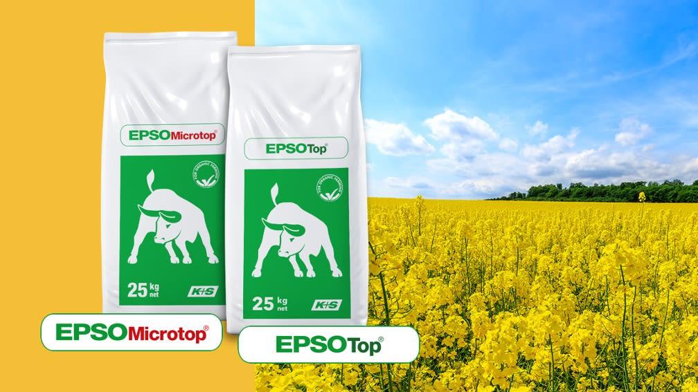 EPSO Bittersalze – Für hohe Ölgehalte im Raps.