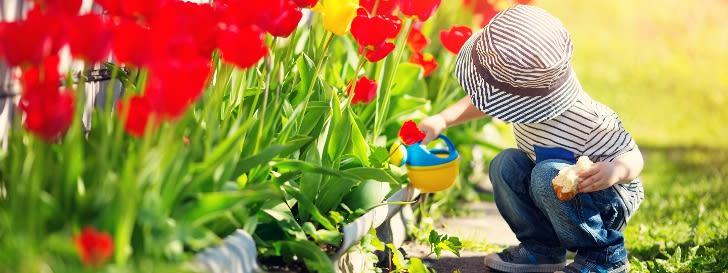 Kind Frühling Tulpen