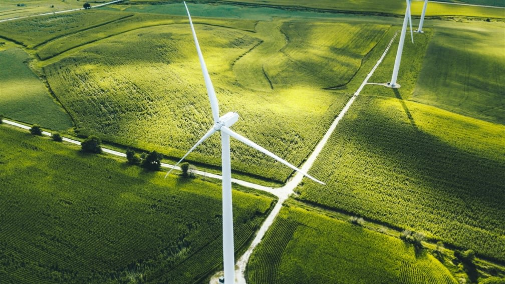 Picture shows wind turbines on a field