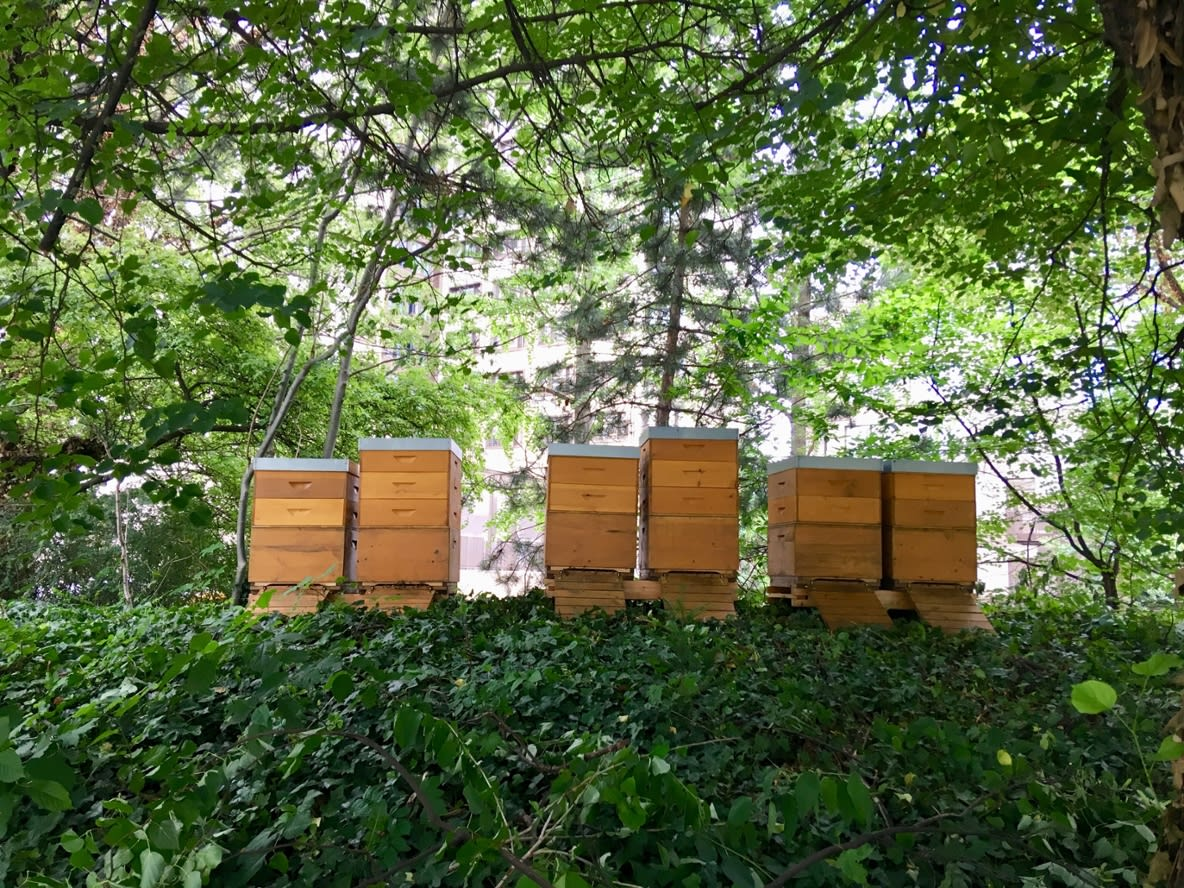 six apiaries BayWa