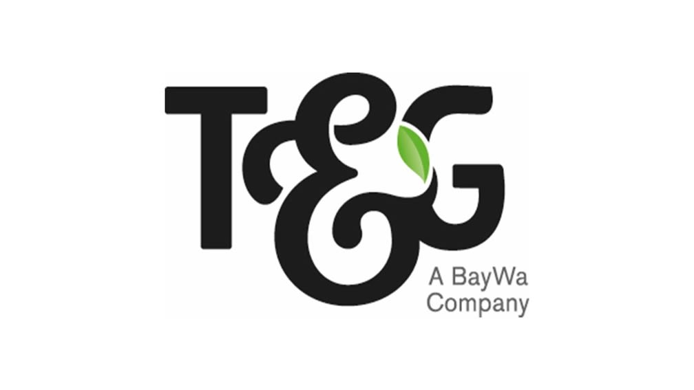 Logo of T&G Global Limited