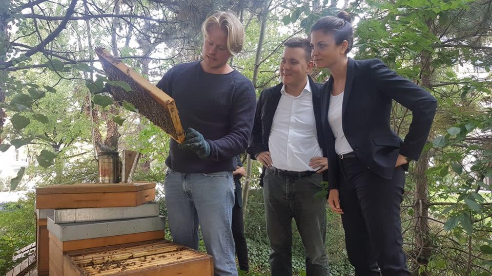 apiaries
