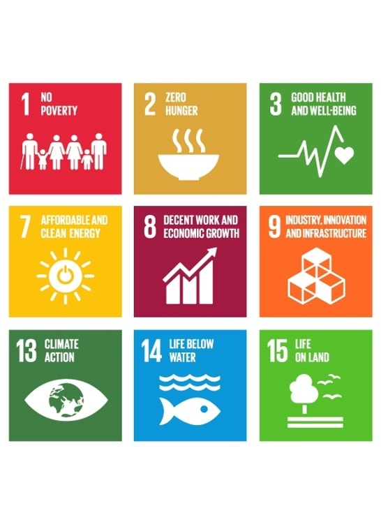 Bild zeigt SDGs