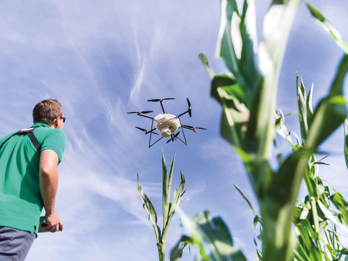 Drohne Einsatz im Feld