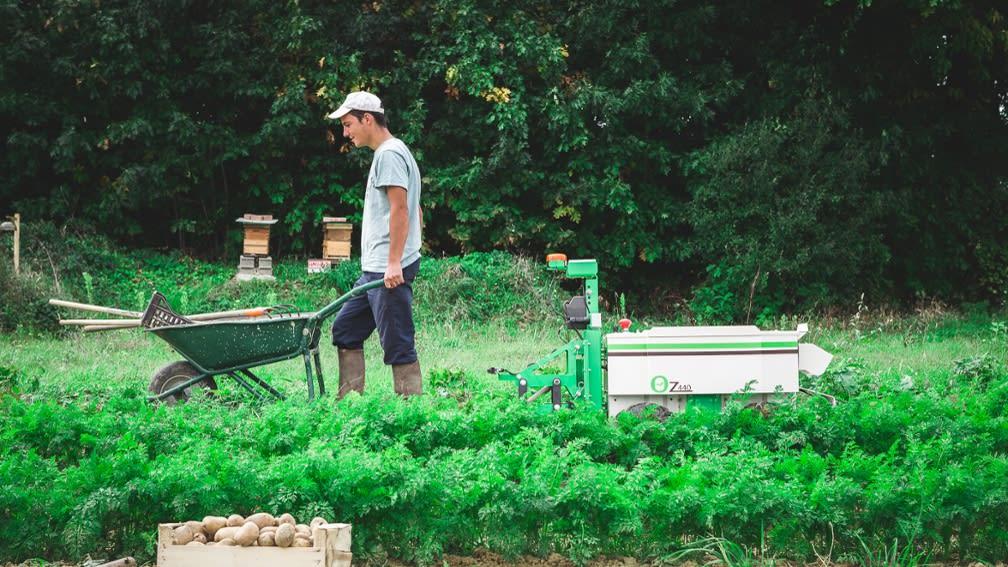 Mann fährt mit Schubkarre im Gemüsebeet und dahinter der Roboter Oz