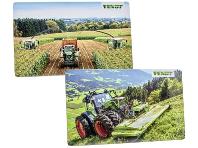 Fendt Brettchenset 2 St., 233 x 143 x 3 mm, Melamin, X991018215000