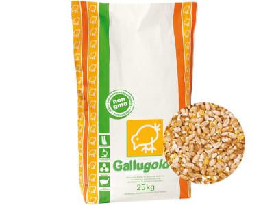 Gallugold® Geflügelkörner-Mix ohne Gentechnik aus Weizen und Mais mit extra Calcium Hühnerfutter Körner 25 kg Sack GMO controlled (VLOG anerkannt)