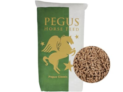 Pegus Classic Pellet haferfreies Pferdefutter im XXL Format 30 kg Sack
