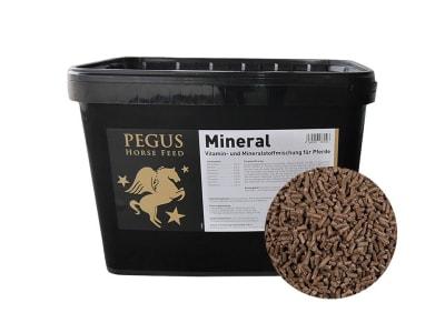 Pegus Mineral getreidefreies Mineralfutter für Pferde zur Vorbeugungf von Mangelerscheinungen 10 kg Eimer