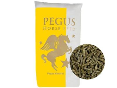 Pegus Natural Wiesencobs naturbelassener, eiweiß- und staubarmer Heuersatz für Pferde zum Einweichen