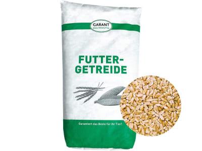 Weizen Ganzkorn ohne Gentechnik Futterweizen für Hühner, Kaninchen und Nager 30 kg Sack