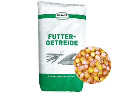 Mais Ganzkorn ohne Gentechnik Futtermais für Nutz - und Kleintiere 30 kg Sack