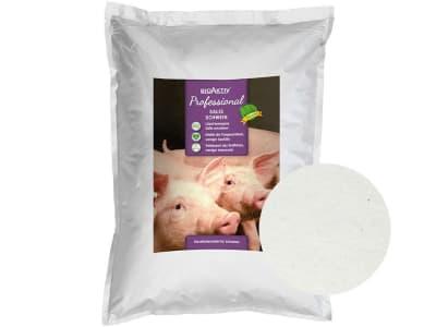 BioAktiv® Professional Salis Schwein für Schweine Pulver 25 kg Beutel
