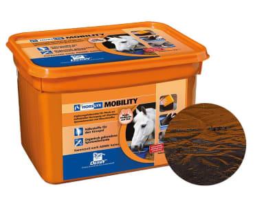 DERBY® Horslyx Mobility Leckmasse für Pferde zur Unterstützung des Bewegungsapparats und des Immunsystems