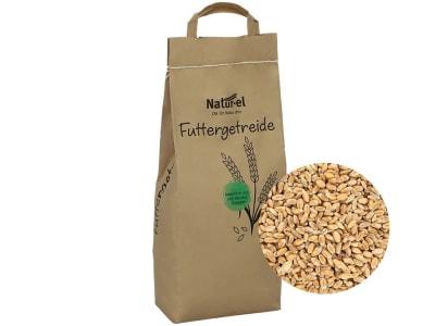Futterweizen ohne Gentechnik Einzelfuttermittel 5 kg Sack