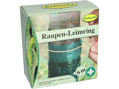 Schacht Raupen-Leimring   Schachtel