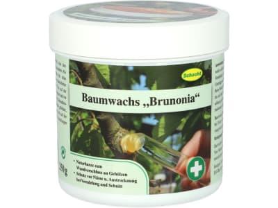 Baumwachs Brunonia  250 g Dose
