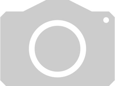 Sommergerste Amidala