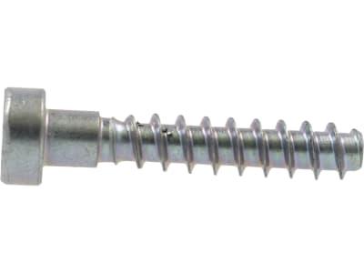 STIHL Torxschraube M 6 x 32,5 mm, Grobgewinde, für Kunststoffverschraubung Heckenschere, Kettensäge und weitere Motorgeräte, 9074 478 4675