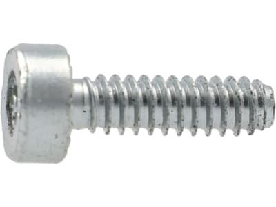 STIHL Torxschraube D 5 x 18 mm, Grobgewinde, selbstschneidend, für Freischneider, Rasenkantenschneider, Heckenschere, Kettensäge und weitere Motorgeräte, 9075 478 4085