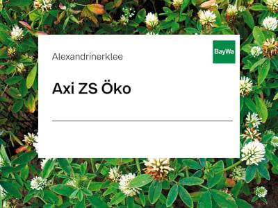 Alexandrinerklee Axi ZS Öko 25 kg Sack