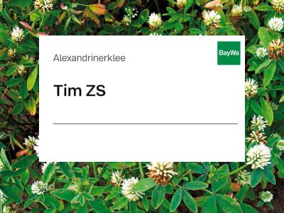 Alexandrinerklee Saatgut Tim ZS 25 kg Sack