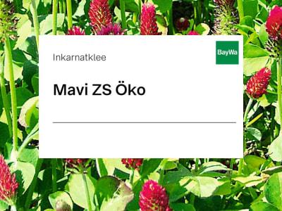 Inkarnatklee Mavi ZS Öko 25 kg Sack
