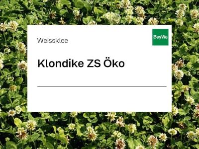 Weissklee Saatgut Klondike ZS Öko 25 kg Sack
