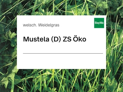 Welsches Weidelgras Mustela diploid ZS Öko 25 kg Sack