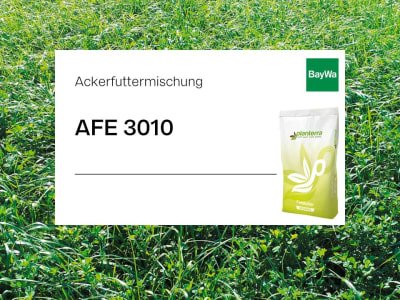 Planterra Ackerfuttermischung AFE 3010 einjährig