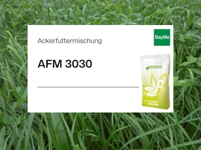 Planterra Ackerfuttermischung AFM 3030 mehrjährig  500 kg BigBag
