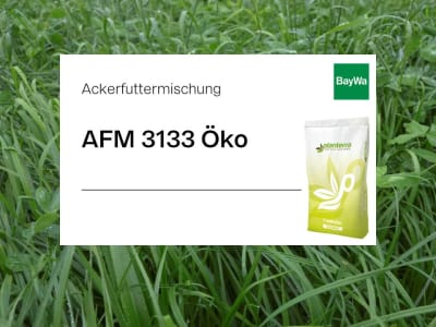 Planterra Ackerfuttermischung AFM 3133 mehrjährig Öko  20 kg Sack