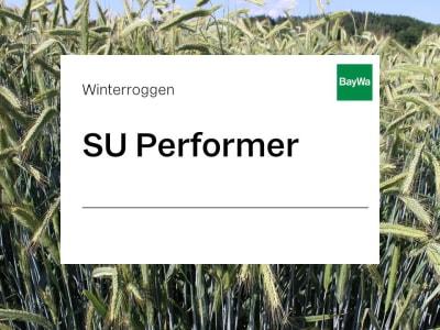 Winterroggen Saatgut SU Performer ZS Hybrid Standard