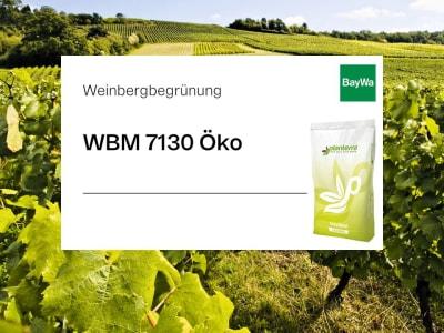 Planterra Weinbergbegrünung WBM 7130 Öko lehmummantelte artenreiche und robuste Mischung zum Schutz vor Erosion, Starkregen oder Hitze
