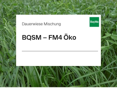 BQSM ® BQSM - D1 Dauerwiese Mischung für trockene, flachgründige Böden und Mittelgebirgslagen 12 kg Sack