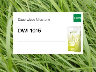 Planterra Dauerwiese DWI 1015 für intensive Lagen mit Klee und späten Weidelgräsern