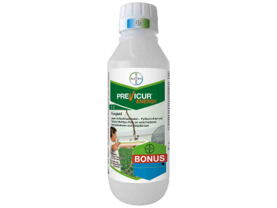 Bayer Previcur® Energy  1 l Flasche