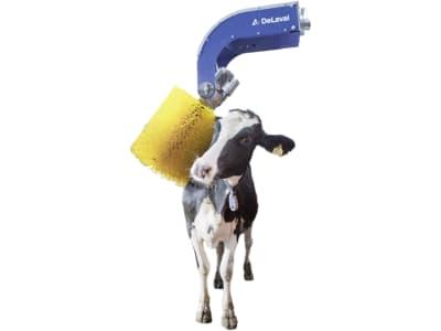 """DeLaval Schwingbürste """"SCB3"""", Bürste 17 x 50 cm, 26 min⁻¹, für bis zu 60 Kühe, 89863516"""