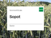 Sommertriticale Sopot