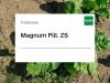 Futterrübe Saatgut Magnum Pilliert ZS Vibrance + Tachigaren + Force