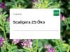 Luzerne Scaligera ZS Öko 25 kg Sack