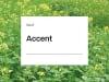 Senf Accent ZS nematodenresistent 25 kg Sack