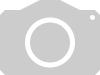 Planterra Wildackermischung WAM 8010 mehrjärige vielfältige Mischung,  inklusive Buchweizen