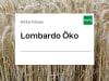 Wintertriticale Saatgut Lombardo ZS Bio