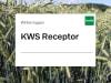 Winterroggen KWS Receptor ZS Standard