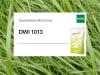 Planterra Dauerwiese DWI 1013 für eine intensive Nutzung, hohe Erträge und beste Nähstoffausnutzung 20 kg Sack