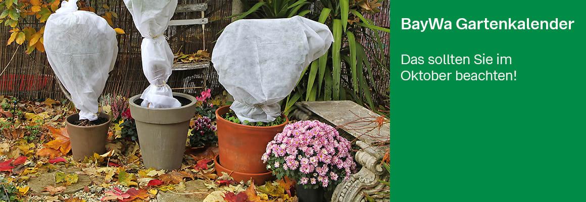 Gartenkalender-Okotober_1160x400.jpg