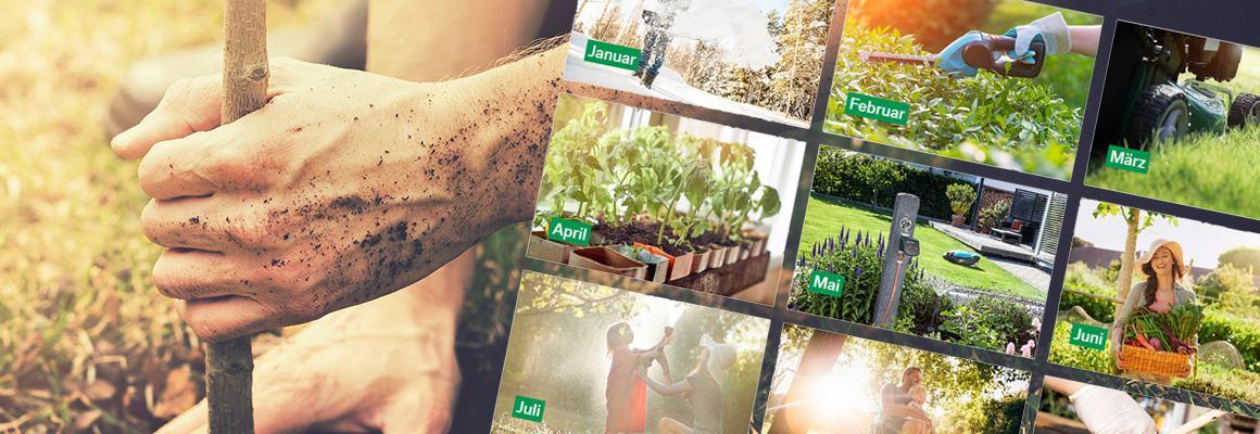 Header_BayWa-BST-Gartenkalender_1160x400.png
