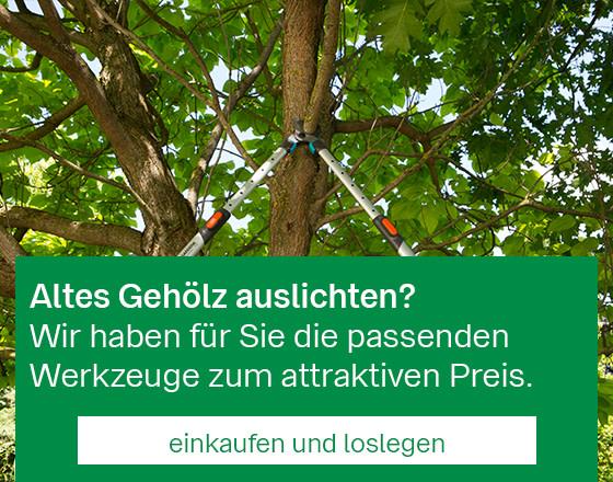 Mobil_StartseitenBanner_Baumschnitt_201909.jpg